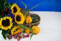 向日葵用装饰南瓜当秋天装饰, postcar 免版税库存照片