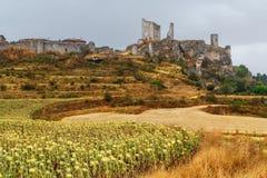 向日葵的领域与墙壁和城堡Calatanazor backgr的 免版税库存照片