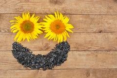 向日葵种子和花顶视图 免版税图库摄影