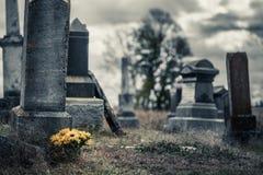 向日葵花束在一座哀伤的公墓 库存照片