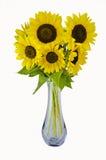 向日葵花瓶 库存图片
