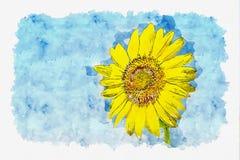 向日葵领域水彩在蓝天的 库存例证