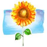 向日葵水彩 免版税图库摄影