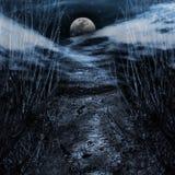 向月亮的路 免版税库存照片