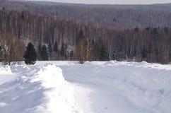 向木头的路在冬天 图库摄影