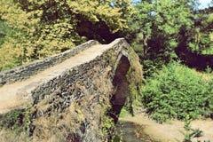 向桥梁扔石头 免版税库存图片