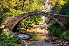 向桥梁扔石头 免版税库存照片