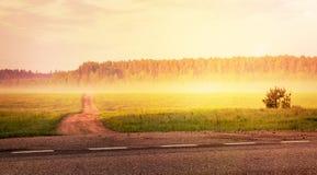 向森林的道路 免版税库存图片