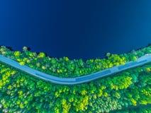 向海岸的路沿从高度的森林照片 库存图片