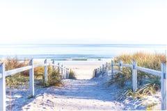 向海滩的道路在RÃ ¼ gen 免版税库存图片