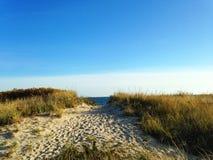 向海滩的道路 库存图片