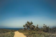 向海洋海岸的Yelloy路 库存图片