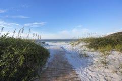 向海滩的清早道路 库存照片