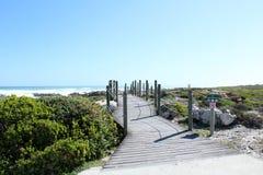 向海滩的路 库存图片