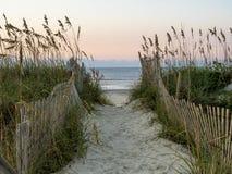向海滩的道路 免版税库存照片