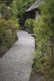 向热带vegetatio包围的房子的一条被铺的石道路 库存图片