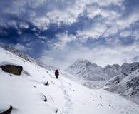 向珠穆琅玛营地的路在Sagarmatha,尼泊尔 免版税库存照片