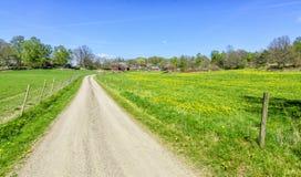 向瑞典农场的春天路 图库摄影
