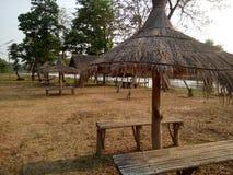 向着海岸的公园和的休息 免版税库存照片