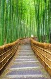 向竹森林, Arashiyama,京都,日本的道路 免版税图库摄影
