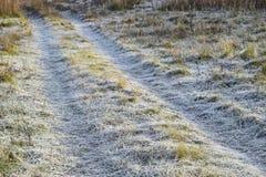 向结霜的草的路 路的弗罗斯特 库存照片