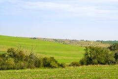 向绿色领域的黏土路 免版税图库摄影