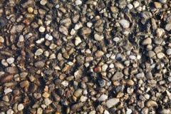 向路径扔石头 库存照片