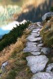 向路径扔石头 免版税图库摄影