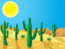 向量仙人掌在沙漠 免版税库存照片