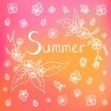 向量夏天背景 库存图片
