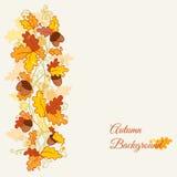 向量套装饰秋天分行-剪贴薄的 图库摄影