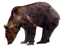 向量熊 向量例证