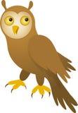 向量猫头鹰 免版税库存图片