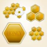 向量蜂蜜梳子设计要素 免版税库存照片