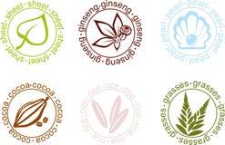 向量 在植物的传染媒介标志 免版税库存图片