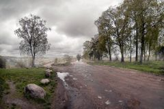 向雾的路 特维尔 俄国 库存图片