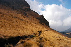 向`伊斯塔西瓦特尔火山`的道路 免版税图库摄影