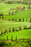 向agritourism的弯曲道路在小山的意大利,托斯卡纳 库存照片