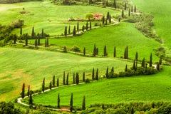 向agritourism的弯曲道路在小山的意大利 免版税库存照片