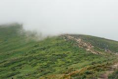 向Hoverla山的道路在乌克兰喀尔巴阡山脉 免版税库存照片