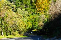 向Huga瀑布,新西兰的路 免版税库存照片