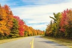 向Keji的路在秋天 库存图片
