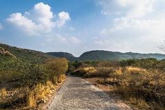 向Ranthambore老虎储备的路 库存照片