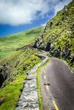 向Slea头的弯曲道路,在幽谷半岛附近,爱尔兰 免版税图库摄影