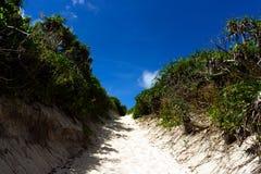 向Sunahama海滩的道路 图库摄影