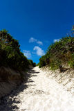 向Sunahama海滩的道路 免版税库存照片