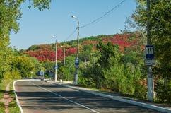 向Svatogorsk的路 库存照片