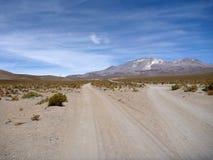 向volcan isluga的路在智利altiplano 库存照片