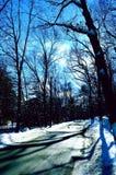 向winterland的路 库存照片