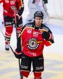 吕勒奥,瑞典- 2015年3月18日 丹尼尔庆祝目标的Zaar (#27吕勒奥曲棍球) 瑞典曲棍球同盟比赛,在吕勒奥Hocke之间 免版税库存照片